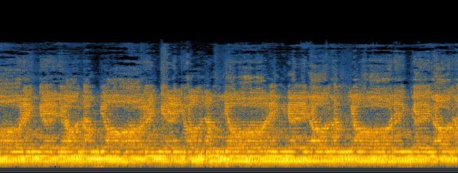 dettaglio sullo spettrogramma del mantra daimoku cantato