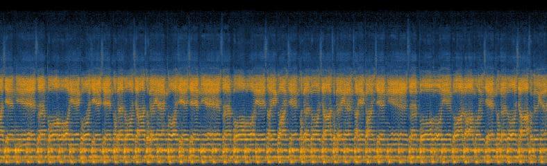 mantra chant spectrogram detail